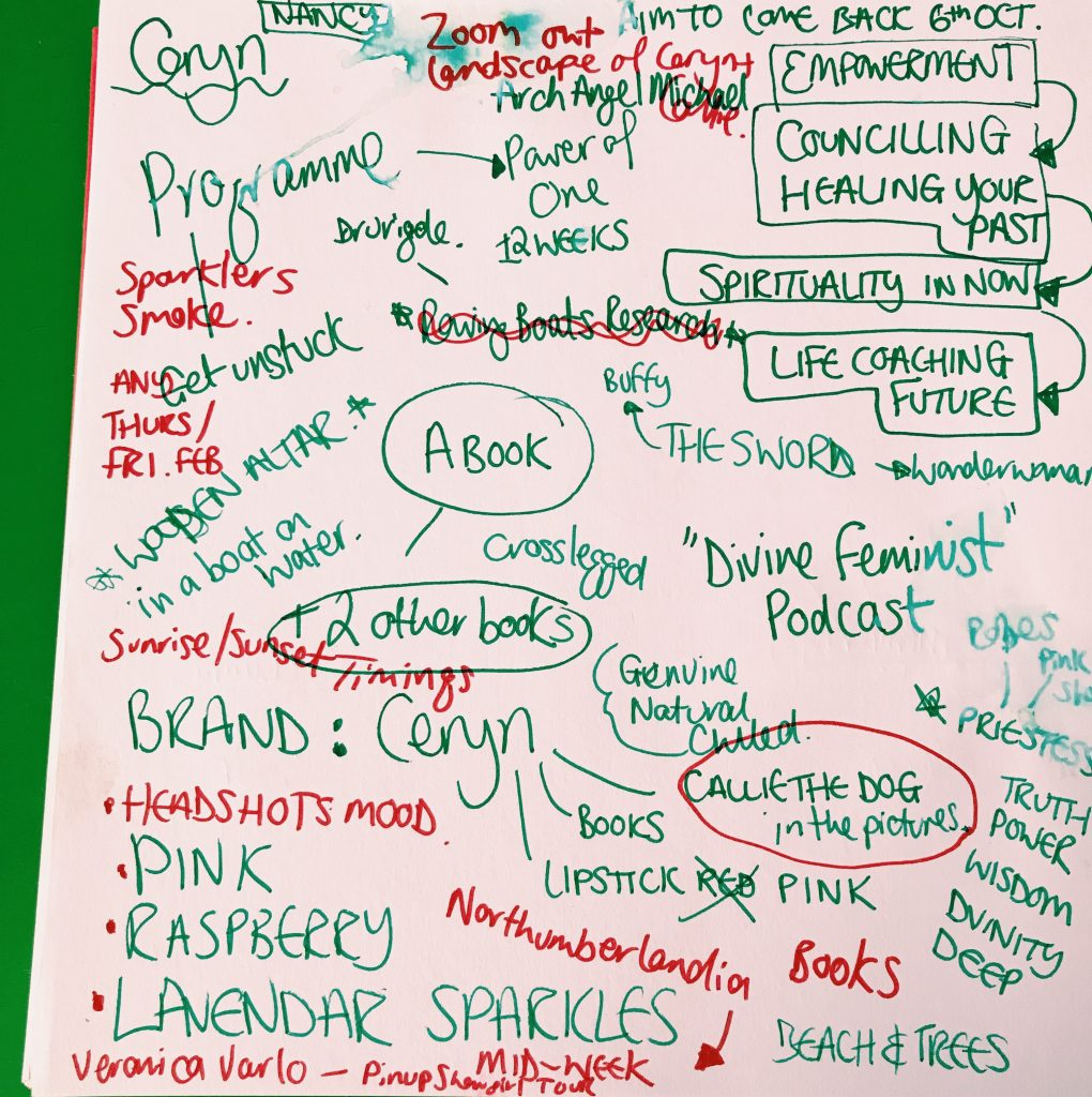 Lots of multi-coloured scribbles from Ceryn's consult meetings
